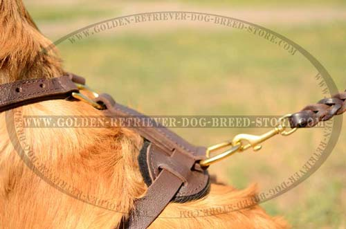 Non-Restrictive Type Leather Harness