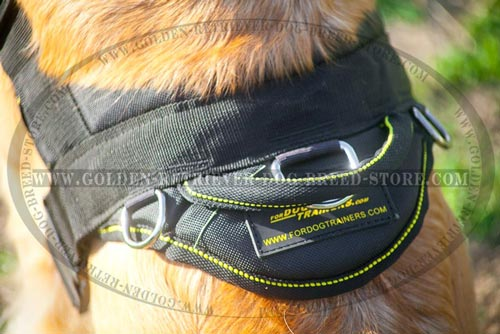 Harness for Sporty Dogs