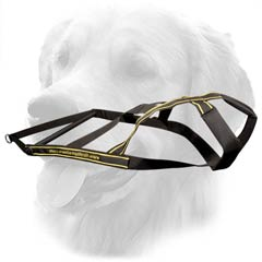 Nylon Harness for Golden Retrievers