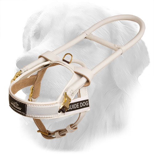 Golden Retriever Harness with Special Handles