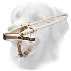 Comfy Design Golden Retriever Harness for Daily Assistance