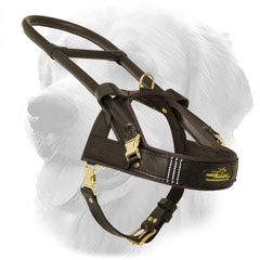 Golden Retriever Harness for Assiatance