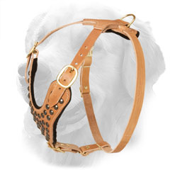 Leather Golden Retriever Harness with Inside Padding