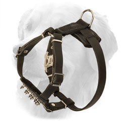 Leather Golden Retriever Harness for Puppies
