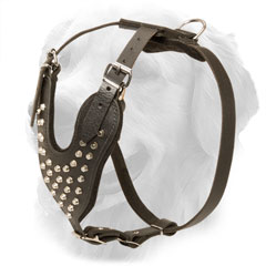 Golden Retriever Harness Padded