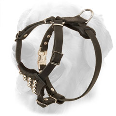 Leather Golden Retriever Harness with Decorations