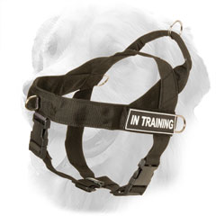 Golden Retriever Harness Extra Ligthweight