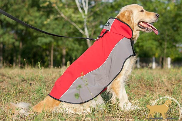 Nylon Golden Retriever Harness of Innovative Design