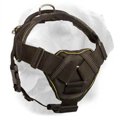 Golden Retriever Harness with Soft Chest Plate