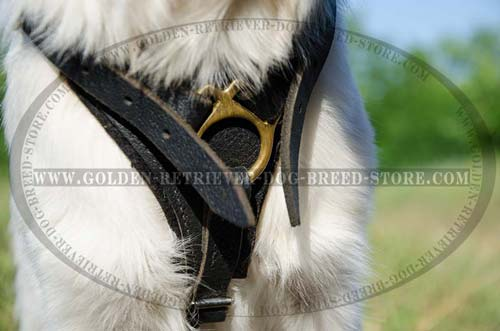 Felt Thick Padding on Leather Dog Harness
