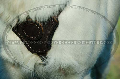 Felt Thick Padded Chest on Leather Dog Harness