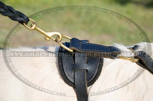 Durable Fittings on Leather Dog Harness
