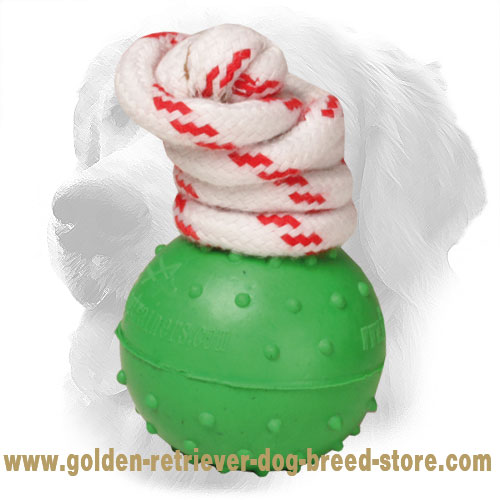 Waterproof Rubber Dotted Golden Retriever Ball