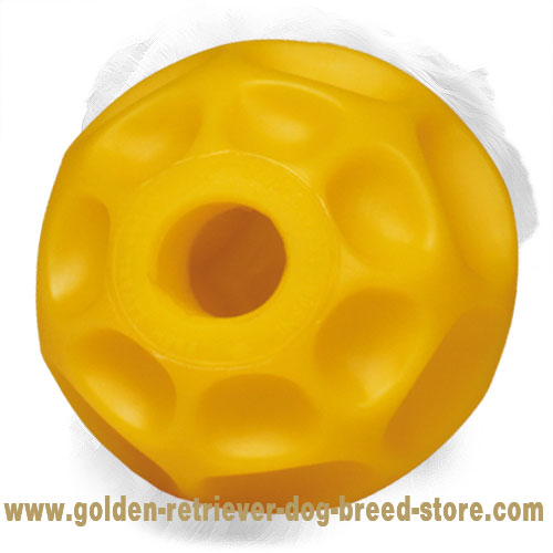 Tetraflex Golden Retriever Ball for Treats Dispensing Medium