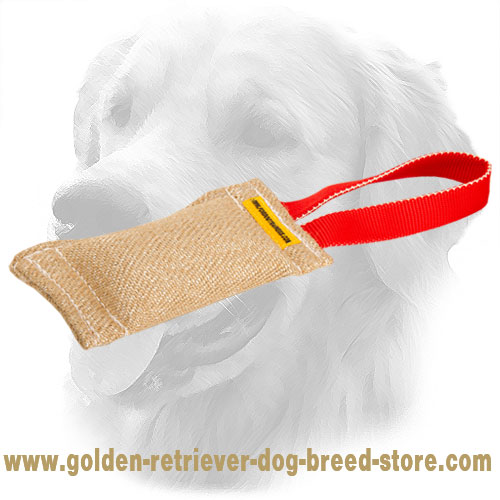 Strong Puppy Jute Golden Retriever Bite Tug