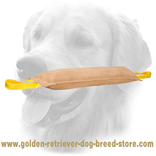 Large Leather Golden Retriever Bite Tug with 2 Handles