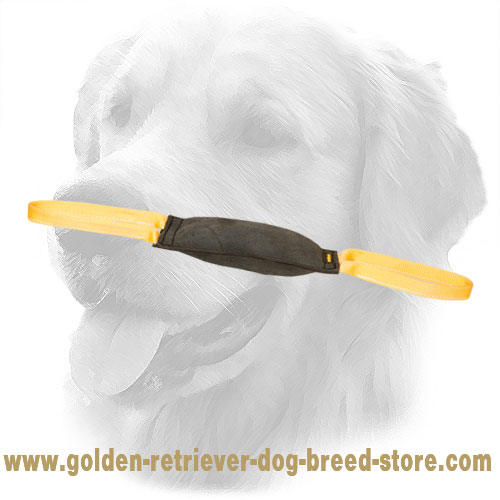Hard Leather Golden Retriever Bite Tug for Young Dog Training