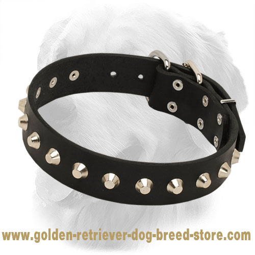 Elegant Leather Golden Retriever Collar with Nickel Pyramids