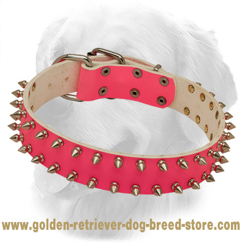 Pink Leather Golden Retriever Collar Decorated with 2 Rows of Spikes