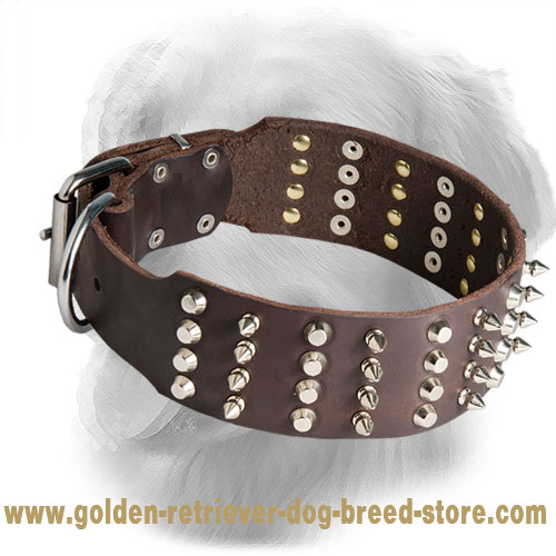 Leather Golden Retriever Collar with Spikes and Studs