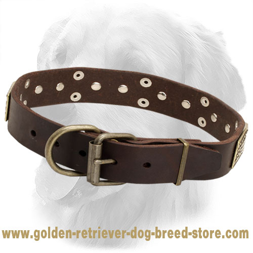 Leather Golden Retriever Collar with Nickel Pyramids and Vintage Plates