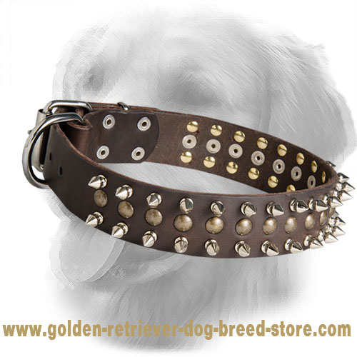 Leather Golden Retriever Collar with Spikes and Half-Ball Studs