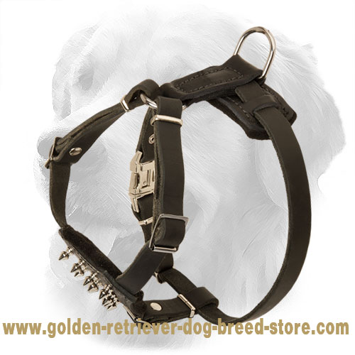 Puppy Size Leather Golden Retriever Harness with Spikes