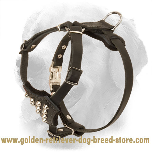 Small Padded Leather Golden Retriever Harness with Pyramids