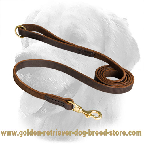 Leather Golden Retriever Leash Stitched Design