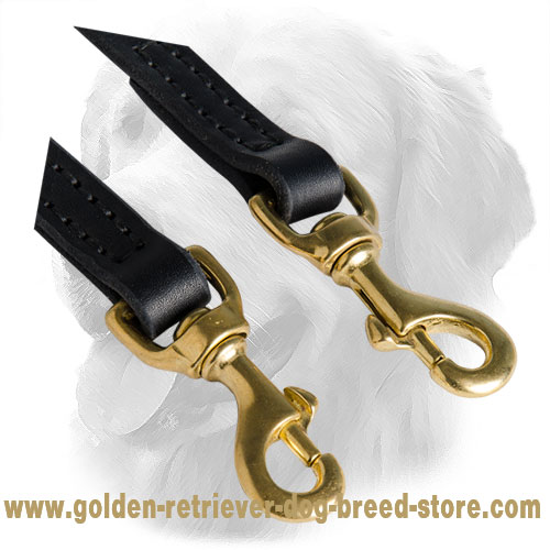 Solid Snap Hooks on Golden Retriever Leather Coupler