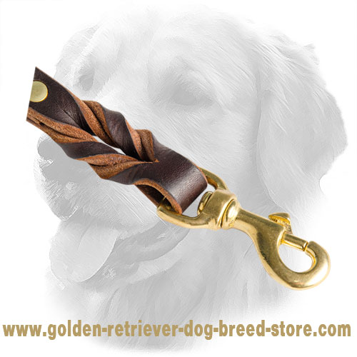 Braids on Golden Retriever Leather Leash
