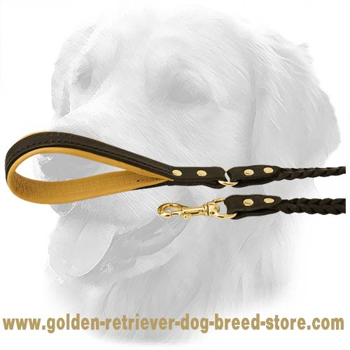Golden Retriever Dog Leather Leash Brass Fittings