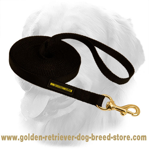 Golden Retriever Dog Nylon Leash Water Resistant