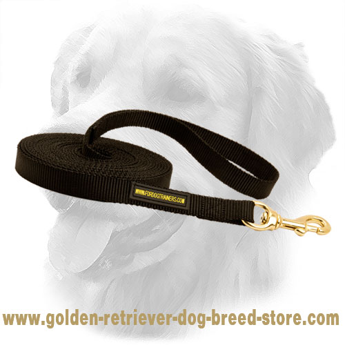 Golden Retriever Dog Nylon Leash Bad Weather