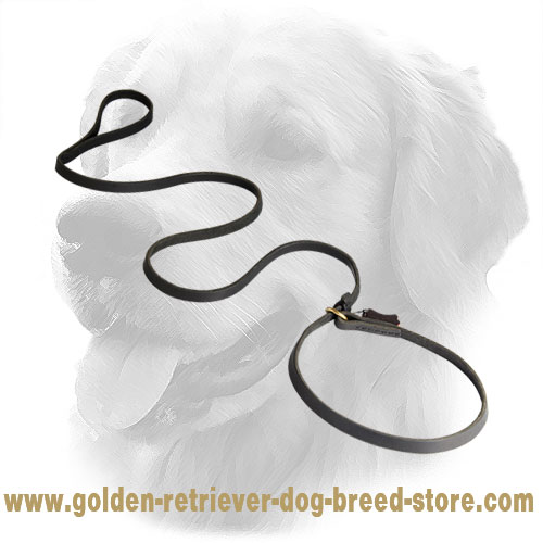 Leather Golden Retriever Leash and Choke Collar Combo
