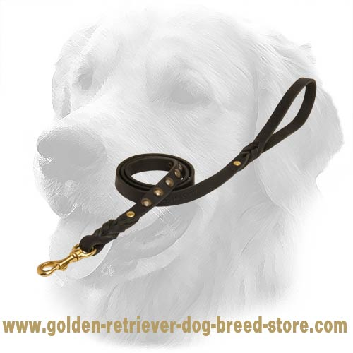 Golden Retriever Leash with Fancy Studs