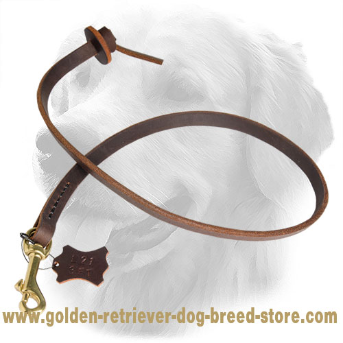 Stitched Golden Retriever Leash with Comfortable Handle