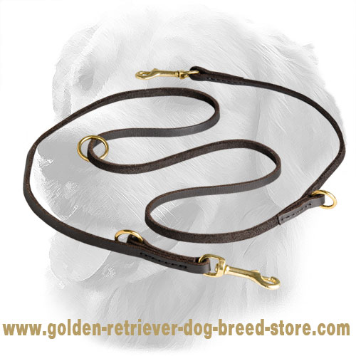 Golden Retriever Leash for Many Activities