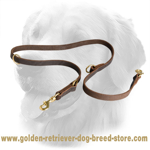 Golden Retriever Leash with Regulated Length