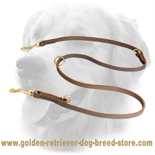 Leather Golden Retriever Leash for Multifunctional Use