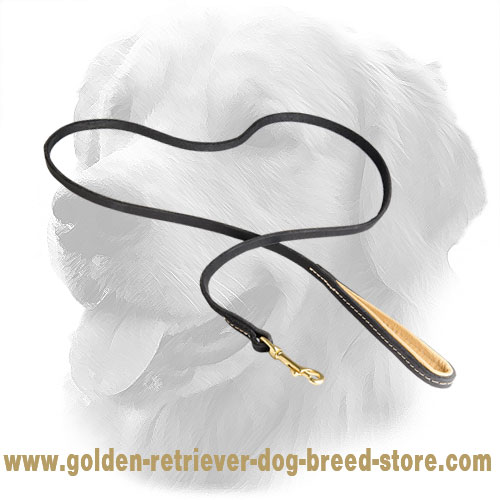 Golden Retriever Leash with Nappa Padded Handle