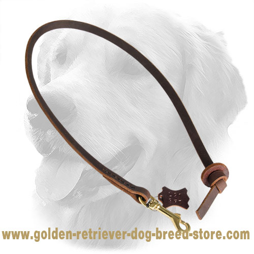 Stitched Leather Golden Retriever Leash for Training