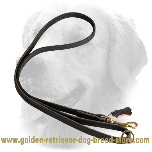 Stitched Golden Retriever Leash with Brass Snap Hook