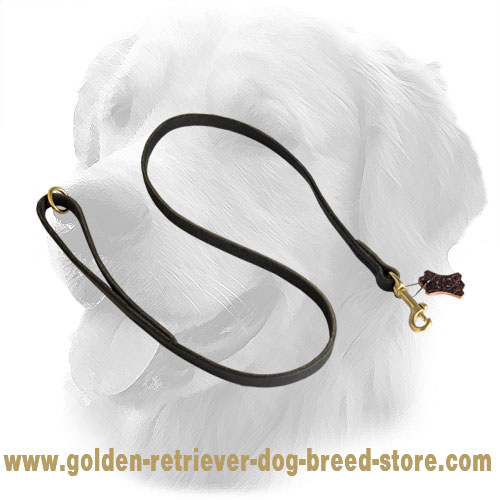 Traditional Stitched Golden Retriever Leash