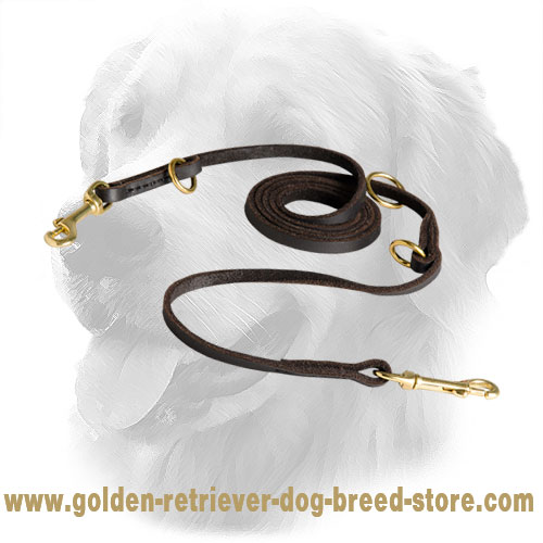 Golden Retriever Leash with Brass Fittings