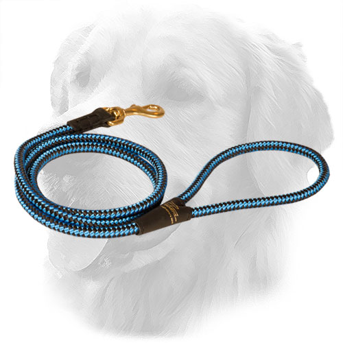 Nylon Golden Retriever Leash with Unique Ornament
