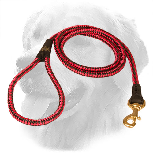 Golden Retriever Leash Nylon Cord