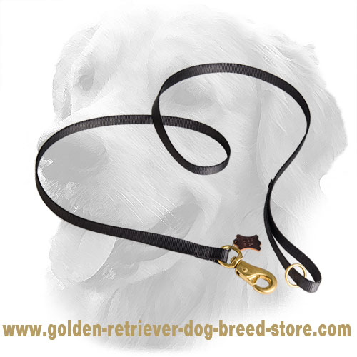 Multifunctional Use Golden Retriever Leash