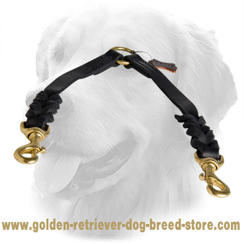 Golden Retriever Leather Coupler Decorative Braids