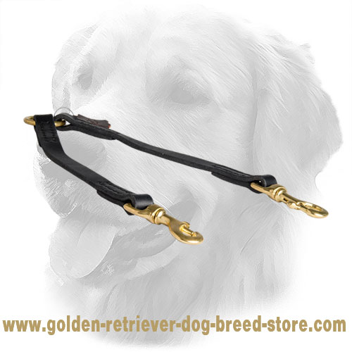 Golden Retriever Leather Coupler Stitched for Durability
